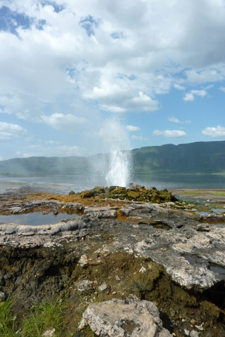 The hot springs of lake bogoria are beautiful, but were flooded this time! Photo from 2010